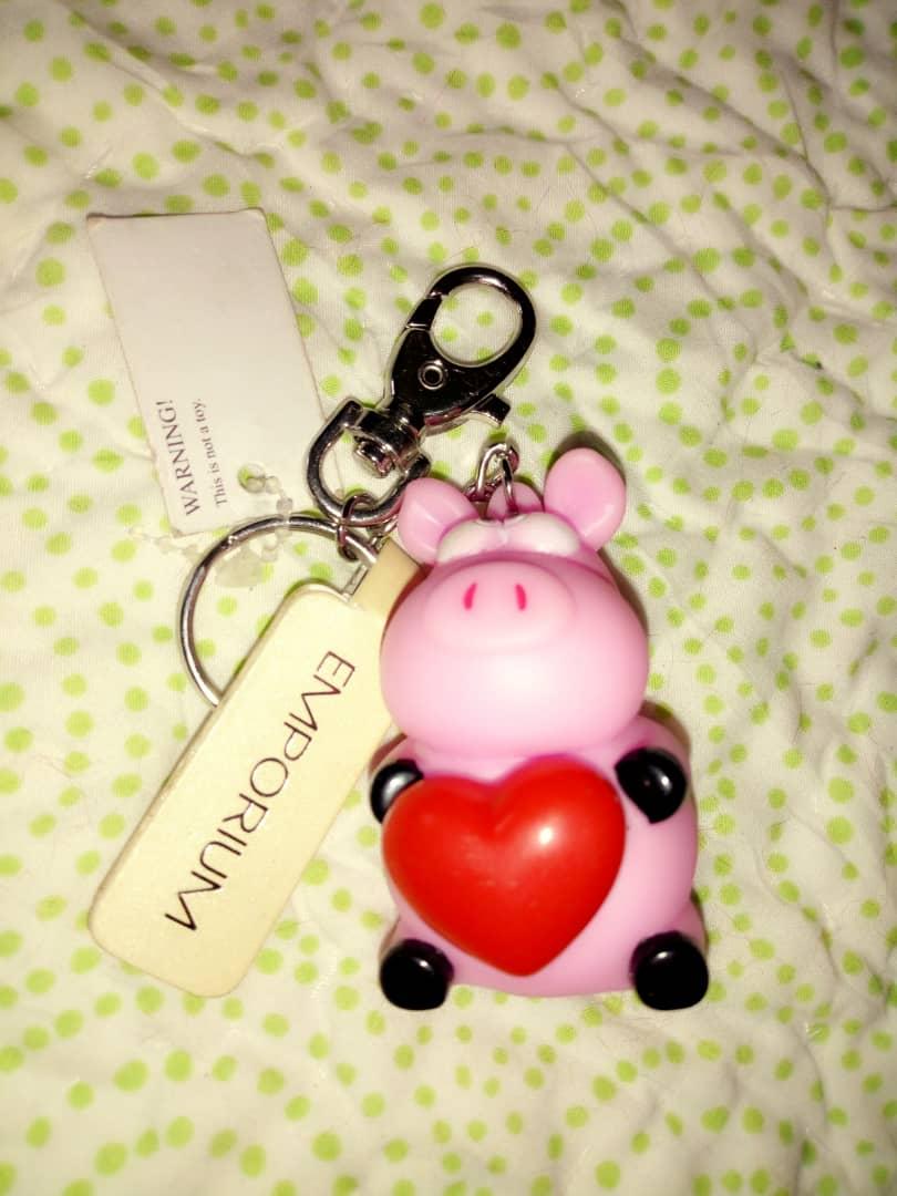 key or bag holder